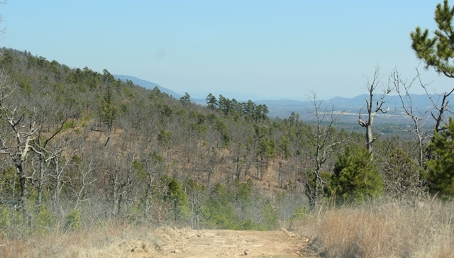 | Saddle Gap Ranch Estates Tuskahoma, OK 74574 4
