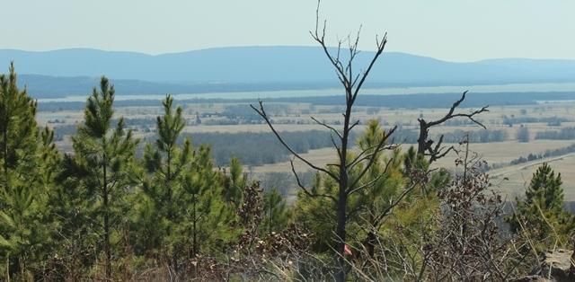 | Saddle Gap Ranch Estates Tuskahoma, OK 74574 7
