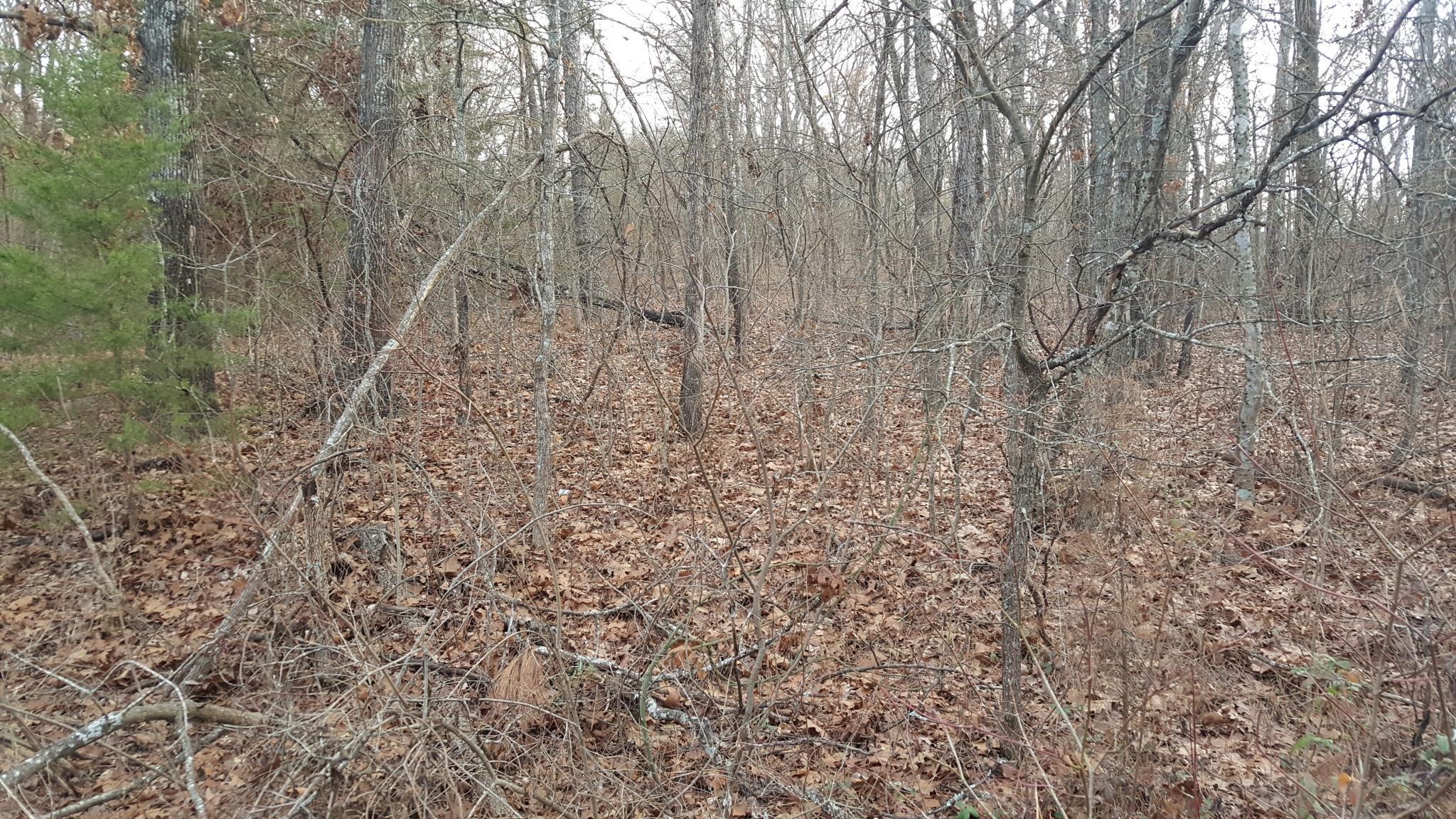 Active   1.93 Acres Near Lake Texoma Mead, OK 73449 6