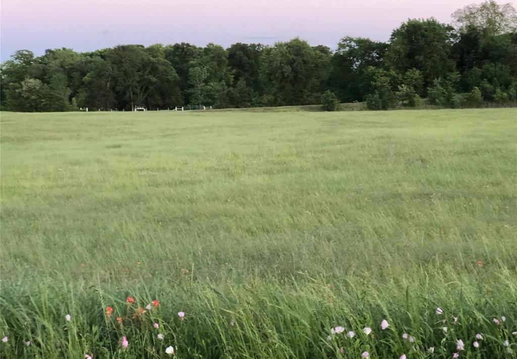 Land in Brenham | 0000 Bleiblerville Bleiblerville, TX 77833 3