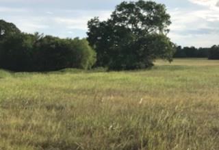 Land in Brenham | 0000 Bleiblerville Bleiblerville, TX 77833 6