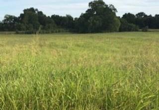 Land in Brenham | 0000 Bleiblerville Bleiblerville, TX 77833 7