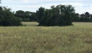 Land in Brenham | 0000 Bleiblerville Bleiblerville, TX 77833 10