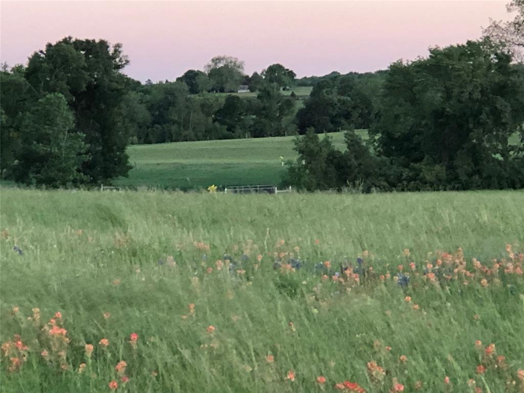 Active   00 Bleiblerville  Bleiblerville, Texas 77833 0
