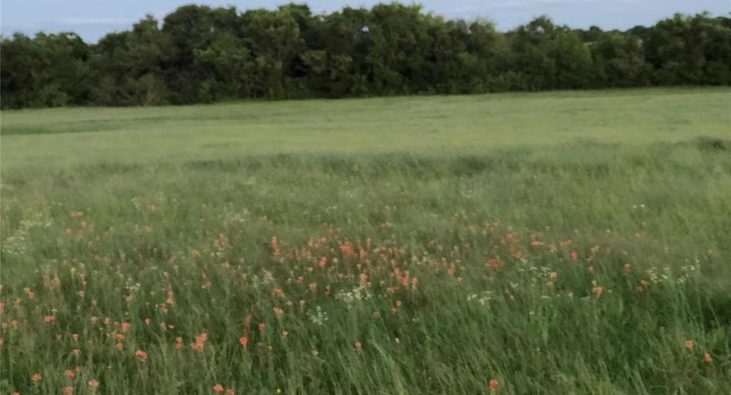 Active   00 Bleiblerville  Bleiblerville, Texas 77833 5