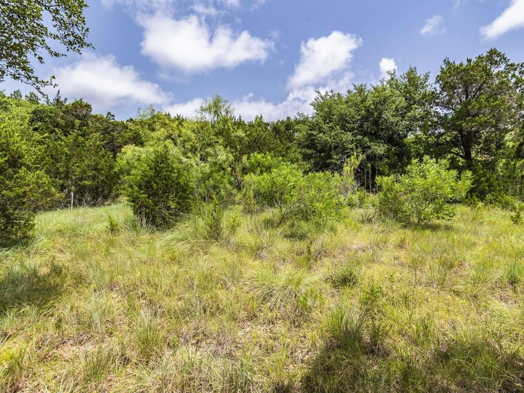 Sold Property | 15005 Dexler Drive Austin, TX 78734 1