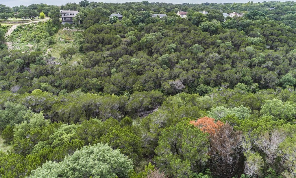 Sold Property | 15005 Dexler Drive Austin, TX 78734 17