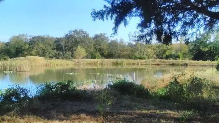 Sold Property | College Rd, Coalgate, Oklahoma 74525, College Rd Coalgate, OK 74525 29