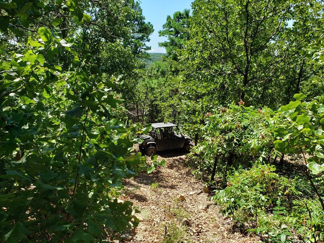 Hunting Land in Oklahoma    Bengal, OK  5