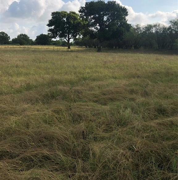 Sold Property | TBD Whit Williams Road Pattison, TX 77466 0