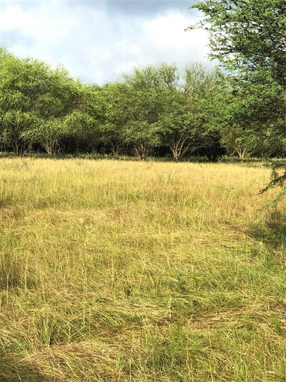 Sold Property | TBD Whit Williams Road Pattison, TX 77466 10