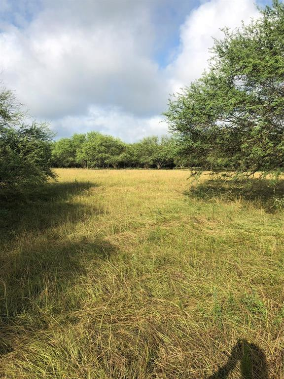 Sold Property | TBD Whit Williams Road Pattison, TX 77466 11