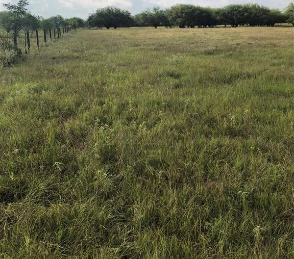 Sold Property | TBD Whit Williams Road Pattison, TX 77466 15