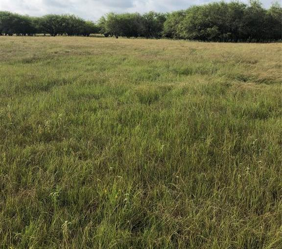Sold Property | TBD Whit Williams Road Pattison, TX 77466 16
