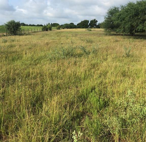 Sold Property | TBD Whit Williams Road Pattison, TX 77466 8