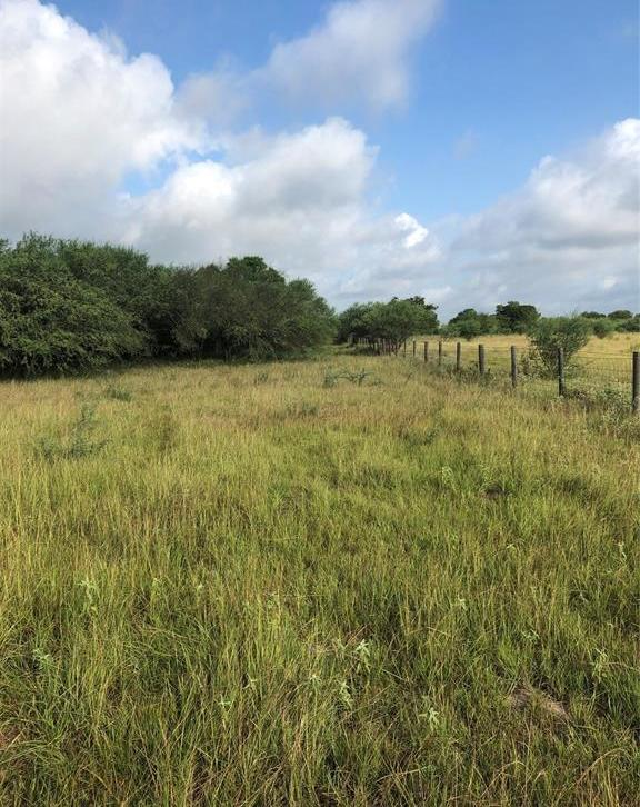 Sold Property | TBD Whit Williams Road Pattison, TX 77466 9