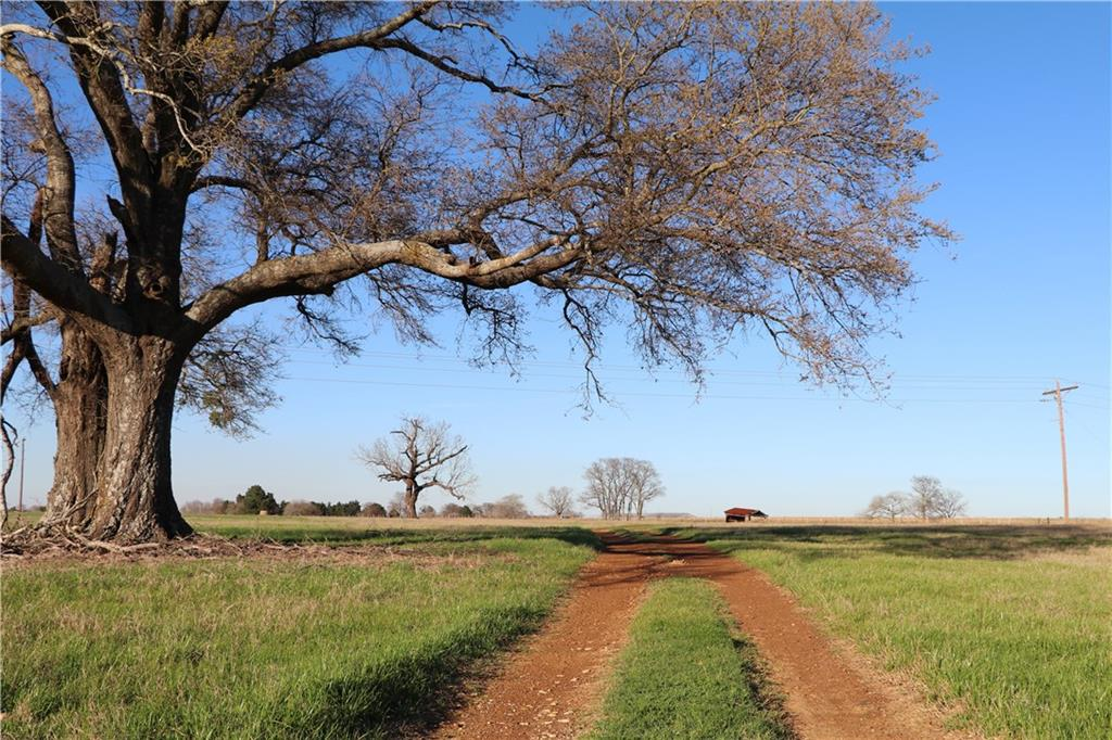 Sold Property | 7787 Fm 804  Larue, Texas 75770 2