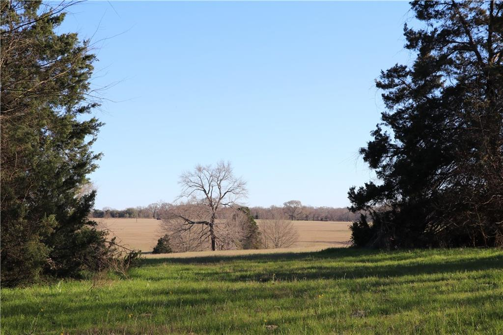 Sold Property | 7787 Fm 804  Larue, Texas 75770 4