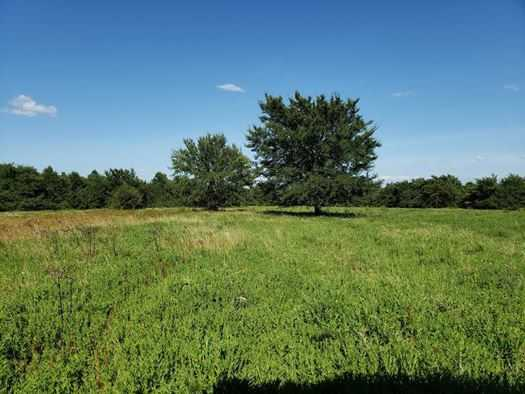 Muskogee County Cattle/Recreational Ranch | N4210 Rd/E0980 Rd Oktaha, OK 74450 0