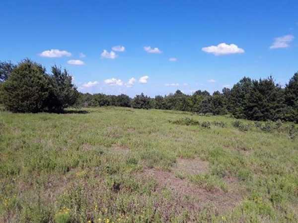 Muskogee County Cattle/Recreational Ranch   N4210 Rd/E0980 Rd Oktaha, OK 74450 1