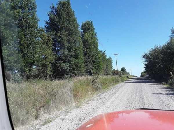 Muskogee County Cattle/Recreational Ranch   N4210 Rd/E0980 Rd Oktaha, OK 74450 11