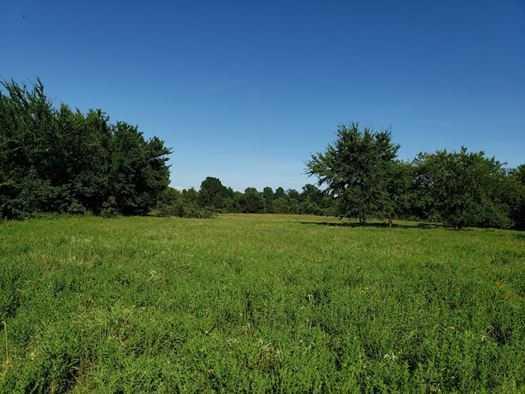Muskogee County Cattle/Recreational Ranch | N4210 Rd/E0980 Rd Oktaha, OK 74450 15