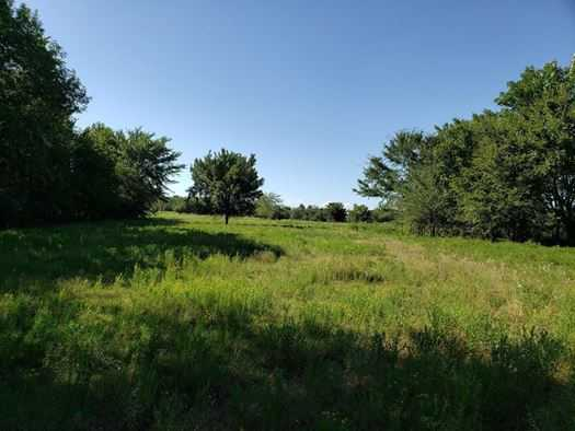 Muskogee County Cattle/Recreational Ranch | N4210 Rd/E0980 Rd Oktaha, OK 74450 16