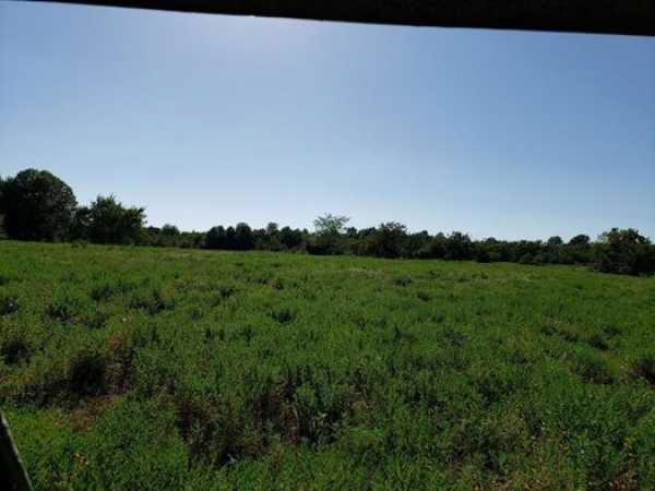 Muskogee County Cattle/Recreational Ranch   N4210 Rd/E0980 Rd Oktaha, OK 74450 19