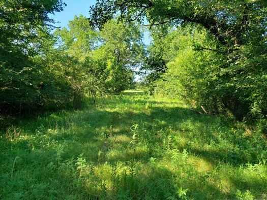 Muskogee County Cattle/Recreational Ranch | N4210 Rd/E0980 Rd Oktaha, OK 74450 20
