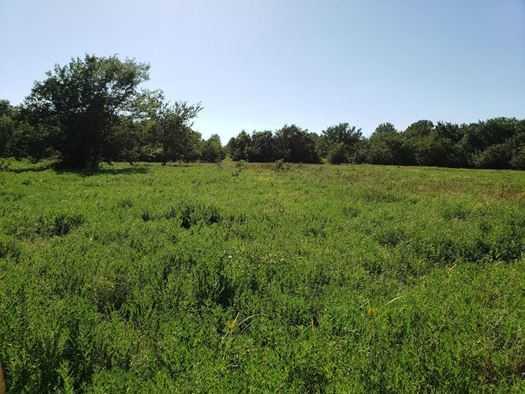 Muskogee County Cattle/Recreational Ranch | N4210 Rd/E0980 Rd Oktaha, OK 74450 21