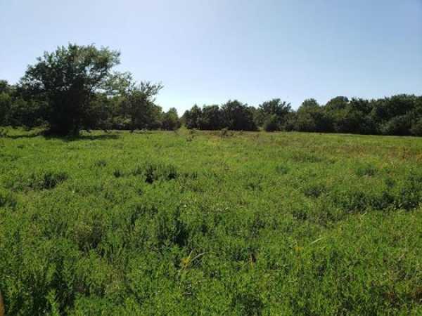 Muskogee County Cattle/Recreational Ranch   N4210 Rd/E0980 Rd Oktaha, OK 74450 21
