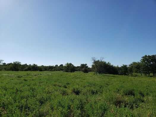 Muskogee County Cattle/Recreational Ranch | N4210 Rd/E0980 Rd Oktaha, OK 74450 22