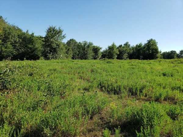 Muskogee County Cattle/Recreational Ranch   N4210 Rd/E0980 Rd Oktaha, OK 74450 23
