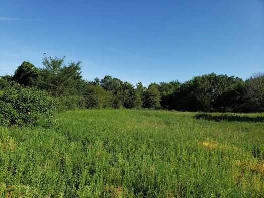 Muskogee County Cattle/Recreational Ranch | N4210 Rd/E0980 Rd Oktaha, OK 74450 24