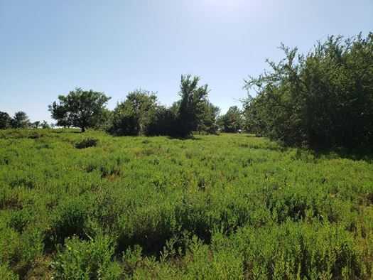 Muskogee County Cattle/Recreational Ranch | N4210 Rd/E0980 Rd Oktaha, OK 74450 25