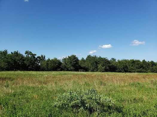 Muskogee County Cattle/Recreational Ranch | N4210 Rd/E0980 Rd Oktaha, OK 74450 26