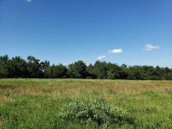 Muskogee County Cattle/Recreational Ranch   N4210 Rd/E0980 Rd Oktaha, OK 74450 26