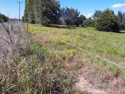 Muskogee County Cattle/Recreational Ranch | N4210 Rd/E0980 Rd Oktaha, OK 74450 3
