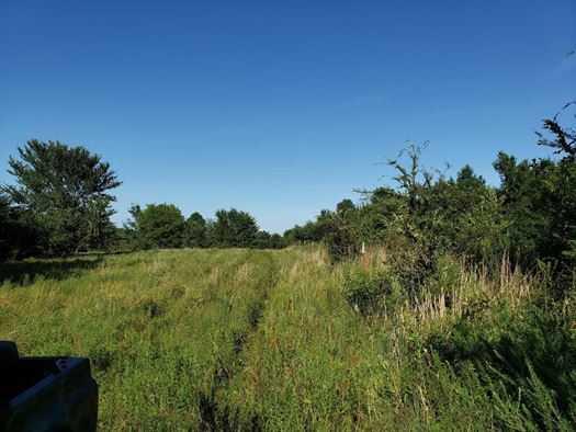 Muskogee County Cattle/Recreational Ranch | N4210 Rd/E0980 Rd Oktaha, OK 74450 31
