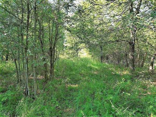 Muskogee County Cattle/Recreational Ranch   N4210 Rd/E0980 Rd Oktaha, OK 74450 32