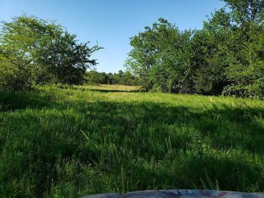 Muskogee County Cattle/Recreational Ranch | N4210 Rd/E0980 Rd Oktaha, OK 74450 39