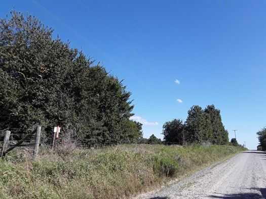 Muskogee County Cattle/Recreational Ranch | N4210 Rd/E0980 Rd Oktaha, OK 74450 4