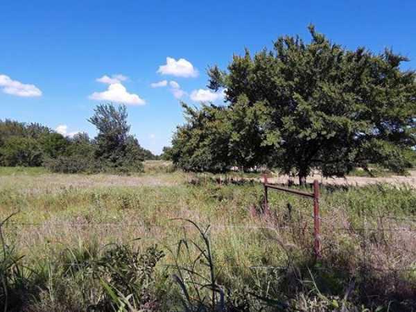 Muskogee County Cattle/Recreational Ranch   N4210 Rd/E0980 Rd Oktaha, OK 74450 7