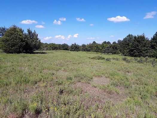 Muskogee County Cattle/Recreational Ranch | N4210 Rd/E0980 Rd Oktaha, OK 74450 8