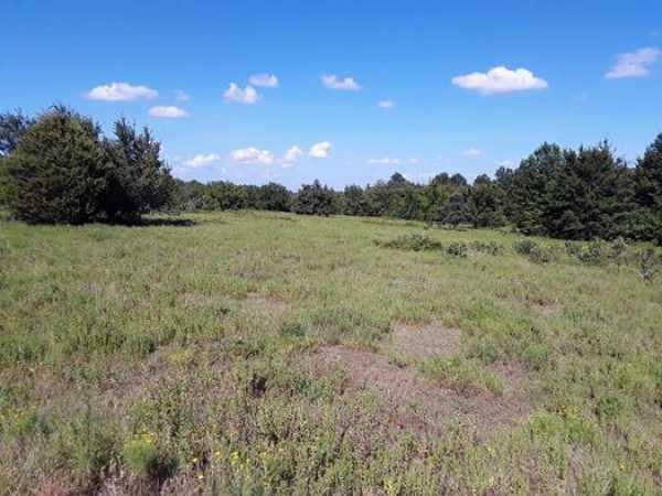Muskogee County Cattle/Recreational Ranch   N4210 Rd/E0980 Rd Oktaha, OK 74450 8