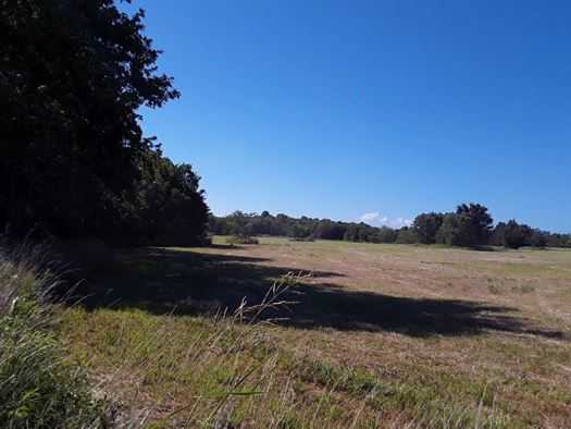 Muskogee County Cattle/Recreational Ranch | N4210 Rd/E0980 Rd Oktaha, OK 74450 9