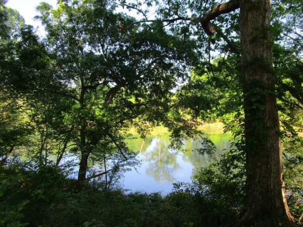 Pending | Little River Frontage/Fuller Rd Nashoba, OK  30