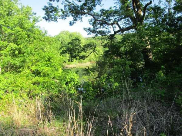 Pending | Little River Frontage/Fuller Rd Nashoba, OK  31