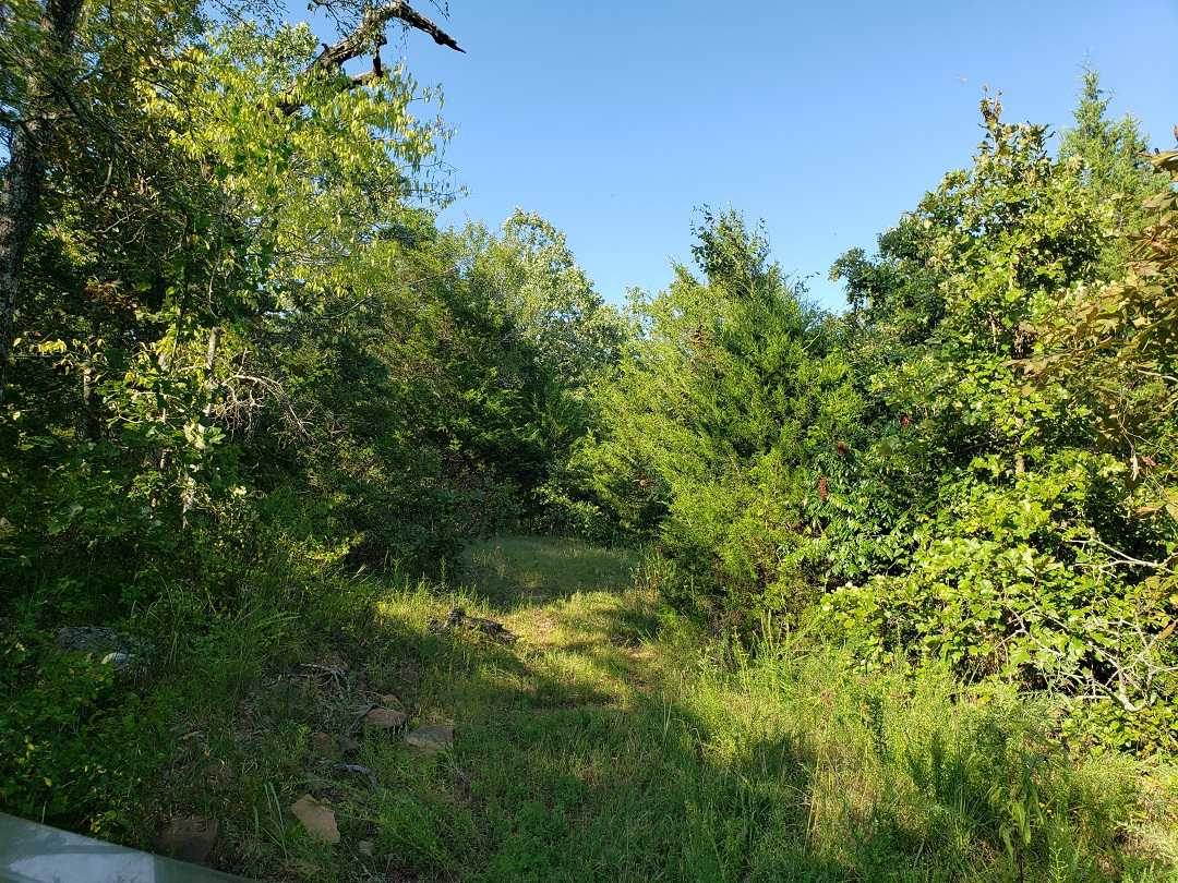 hunting land, deer OK, land OK, mixed ranch, ponds, utilities | Holsten Ln Wilburton, OK 74578 34