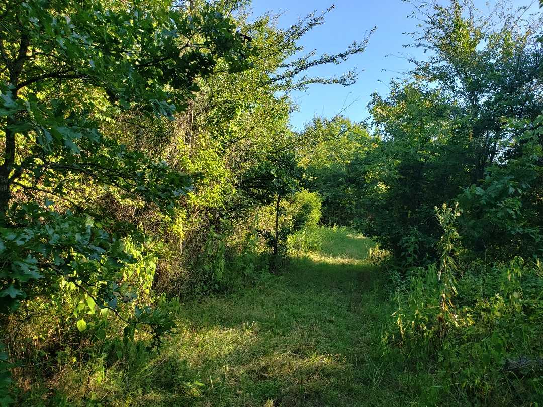 hunting land, deer OK, land OK, mixed ranch, ponds, utilities | Holsten Ln Wilburton, OK 74578 37